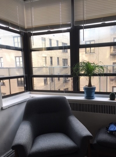 Nicole's plant with a view